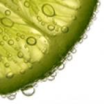 Photo du profil de Citron Vert