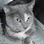 Photo du profil de timone
